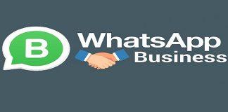 whatapp business app